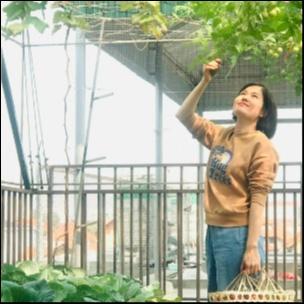 Nguyễn Thu Hằng