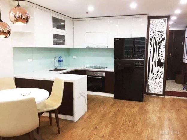 Cho thuê chung cư D Le Roi Soleil Quảng An, Tân Hoàng Minh